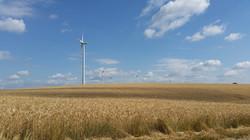 Einsame Windräder über Wilfersdorf