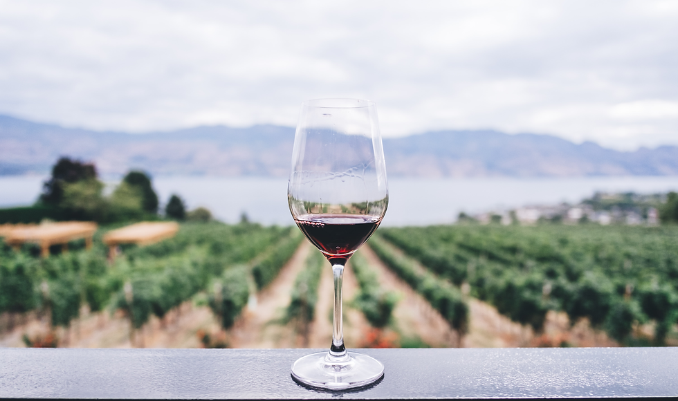 photo glass of wine croped.png
