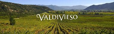 Website vineyard sutainability.jpg