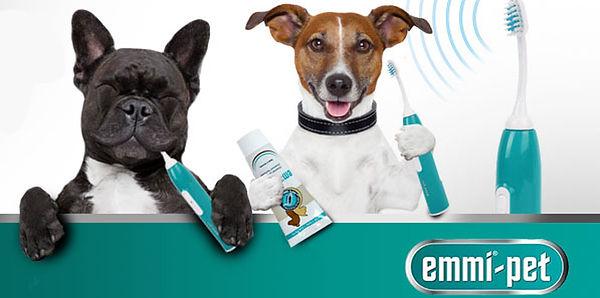 Emmi Pet Ultrasonic teeth cleaning