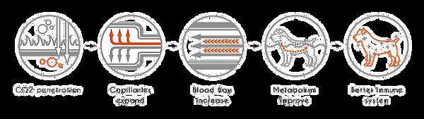 nagayu-system.png