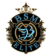 BSMelite 2020 design final gold.png