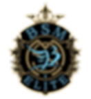 BSMelite 2020 design final gold.png