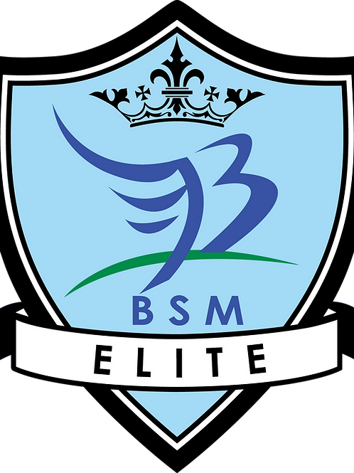 BSM Elite Academy Team