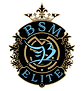 BSMelite 2020 design final gold.png.png