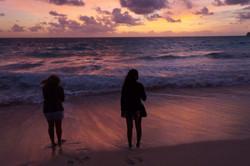 Hawaiian Dawny Adventurers