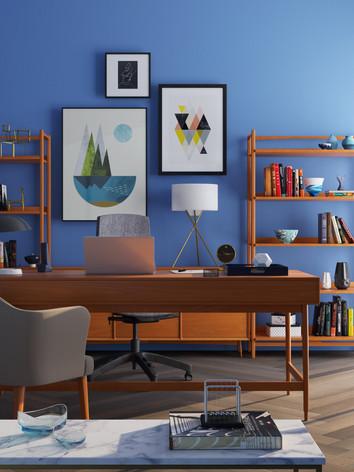 bookcase-chairs-clean-667838.jpg