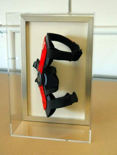 Famed Knee Brace