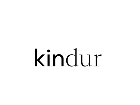 Kindur is hiring! VP Engineering