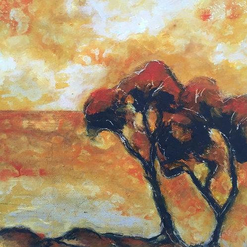 'Meelup trees I'