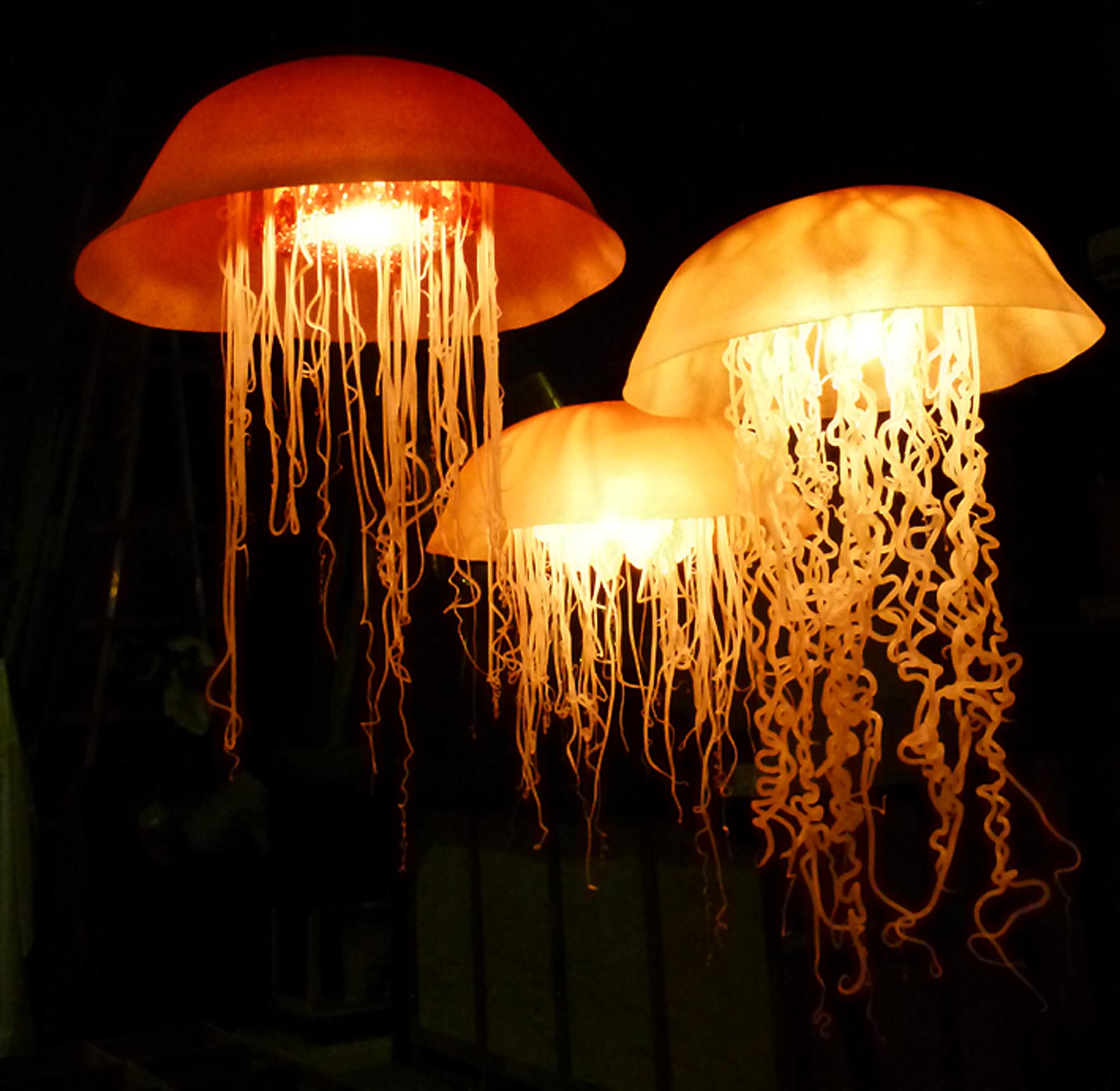 Jellyfish Lights 2011