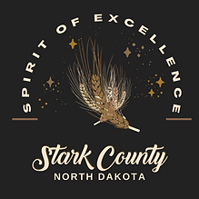 Stark County Spirit of Excellence Award.