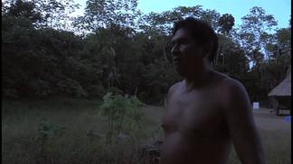 Felicia, The Amazon