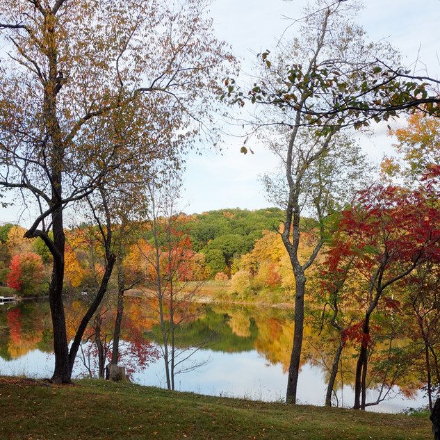 View of Zeky's Pond in Autumn