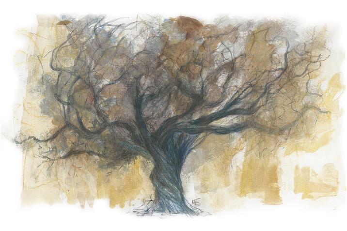 The Dark Oak