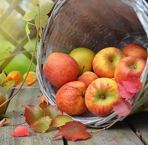 apples-1776744_1920_edited.jpg