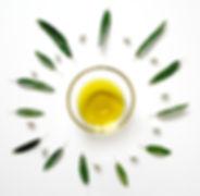 olive-2657696_1920.jpg