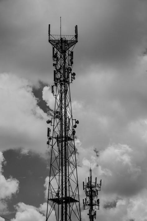Tree 03 - Telecom