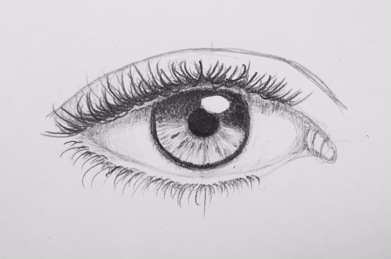 oeilserge