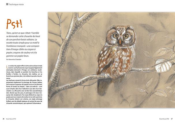 DP30-owl.png