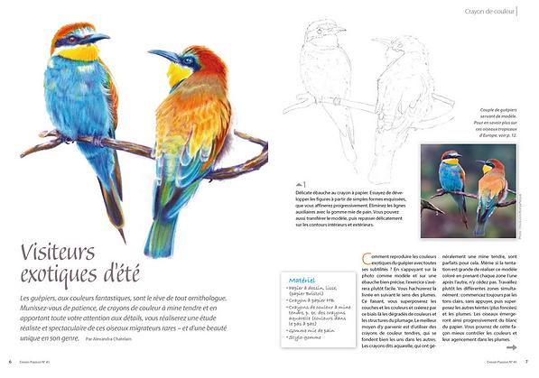 DP45-birds.png