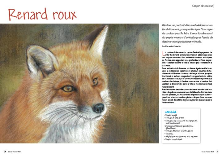 FOX-01.png