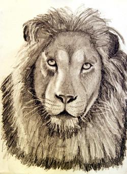 lion serge