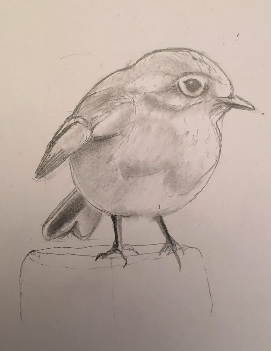 oiseauvalerie
