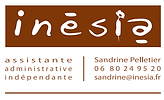 INESIA SITE.png