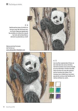 panda -dp32.png