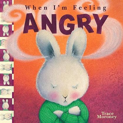 When I'm Feeling Angry (YWFA)