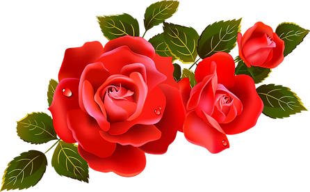 Roses-red-rose-clipart-clipart-kid.png