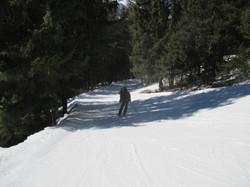 Ski Forêt2