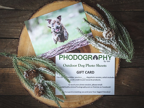3 Dog Photo Session Gift Card