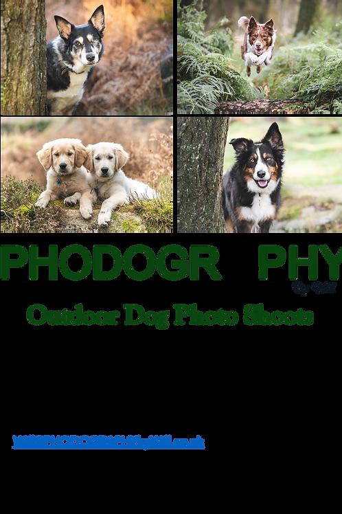 Digital Download Gift Voucher - 1 Dog
