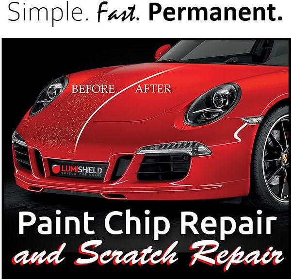 Lumi Paint Chip Simple Fast Permanent.JP