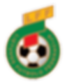lietuvos-futbolo-federacija-logo-B63328A