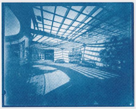 Cyanotype from 5x4 Negative