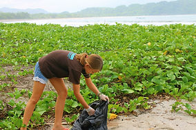 Beach clean up at school in Samara, Guanacase, Costa Rica