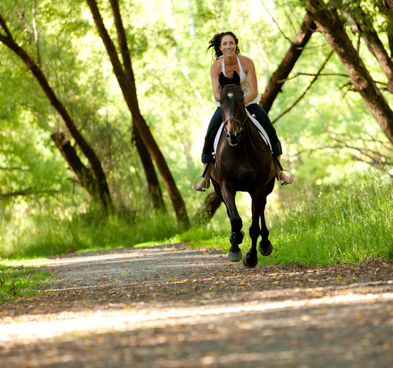 horse riding scene