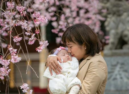 桜の楽しみかた