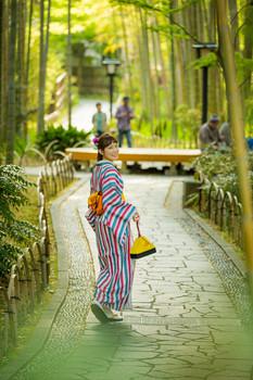 修善寺の竹林の小径で振り返る着物の女性