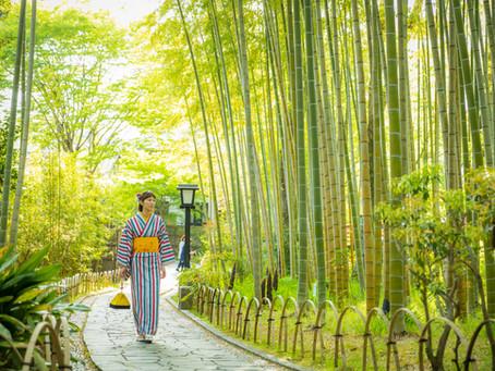 お散歩フォトツアー in 修善寺