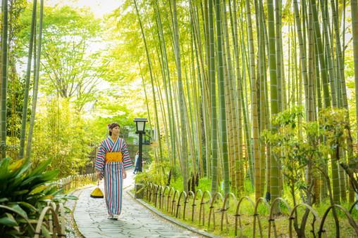 修善寺の竹林の中を行く着物美女
