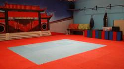 Inside Kungfu Field