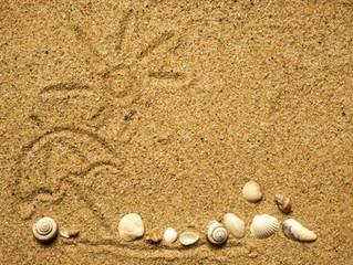 Как выбрать и где можно купить песок