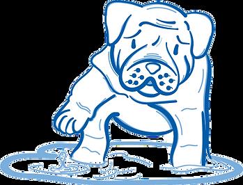 wet-puppy-flood.png
