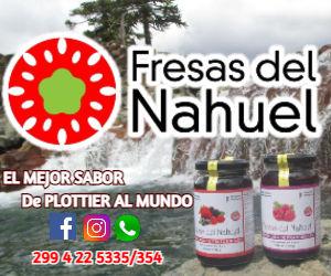 fresas del nahuel para web .jpg