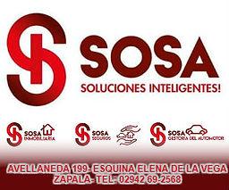 SOSA ZAPALA.jpg