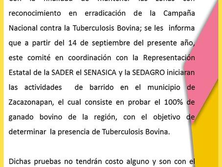 Inician  actividades de barrido en el municipio de Zacazonapan.